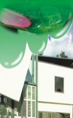 氟硅荷珠自洁纳米外墙漆